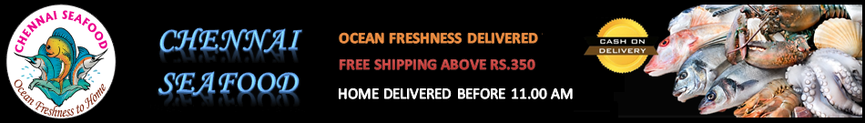 ChennaiSeafood.in - Brings fresh seafood directly to your doorsteps